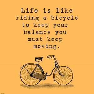 Orange Einstein Bicycle Quote by Veruca Salt