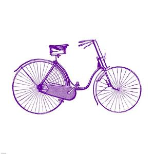 Purple On White Bicycle by Veruca Salt