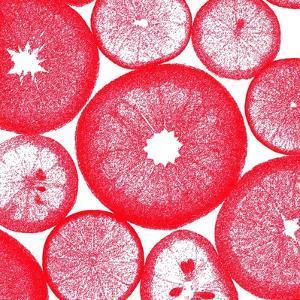 Red Lemon Slices by Veruca Salt