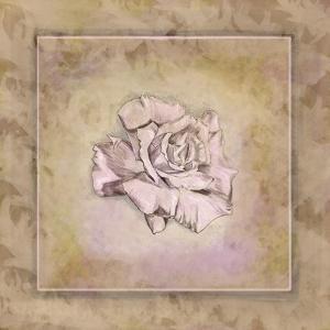 Rose Square I by Veruca Salt