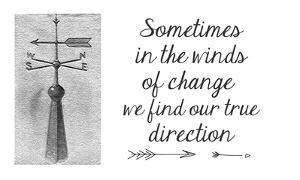 Sometimes In The Winds Of Change by Veruca Salt