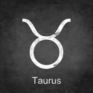 Taurus - Black by Veruca Salt