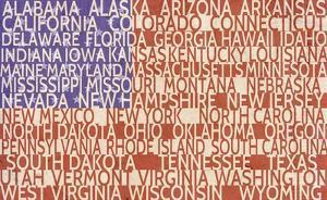 US Flag by Veruca Salt
