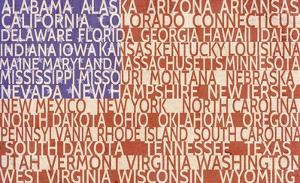 US Flag by Veruca Salt