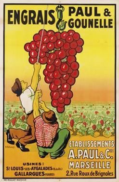 Engrais Paul Et Gounelle Poster by Viano