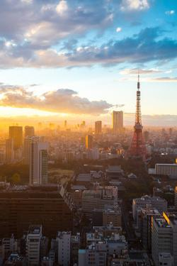 Aerial View Tokyo Tower Cityscape Sunset at Dusk Japan by vichie81