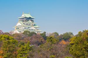 Osaka Castle with Autumn Garden in Kansai Japan by vichie81