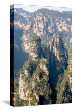 Zhangjiajie National Forest Park at Wulingyuan Hunan China by vichie81