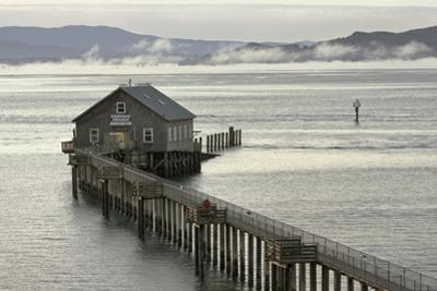 A Former Coast Guard Station on Tillamook Bay by Vickie Lewis