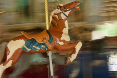 Carved Animals Speed Past on a Historic 1915 Carousel by Vickie Lewis