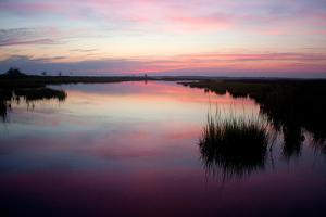 Chincoteague Bay Sunset, Taken from Assateague Island, Maryland by Vickie Lewis