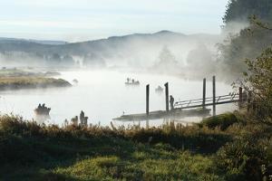 Fisherman Enjoy a Beautiful Foggy Morning Fishing by Vickie Lewis