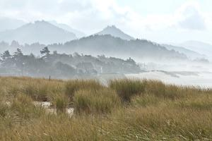 Fog at Cannon Beach, Oregon by Vickie Lewis