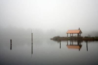 Spring Lake, Near the Oregon Coast in Twin Rocks, Oregon by Vickie Lewis
