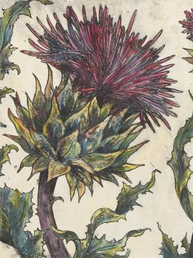 Spear Thistle - Gauche by Vicky Oldfield