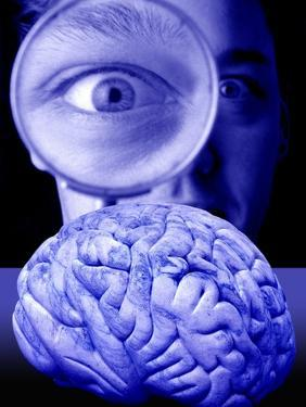 Studying the Brain, Conceptual Image by Victor De Schwanberg