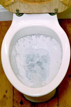 Toilet Being Flushed by Victor De Schwanberg