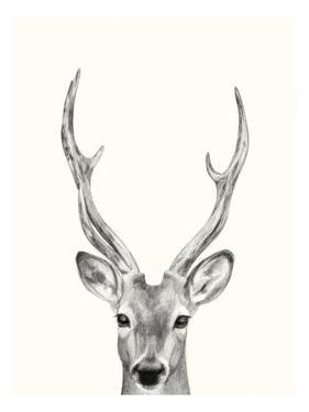 Animal Mug IV by Victoria Borges