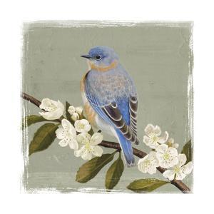 Bluebird Branch II by Victoria Borges