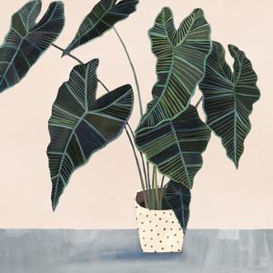 Houseplant II by Victoria Borges