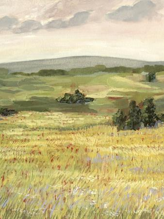 Morning Meadow II