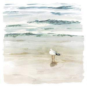 Seagull Cove II by Victoria Borges