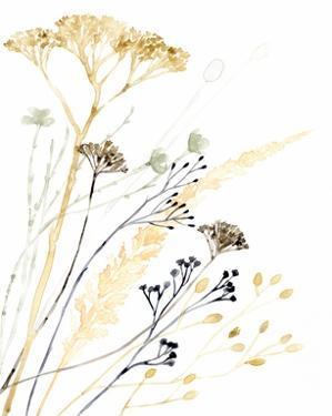 Summer's Souvenir II by Victoria Borges
