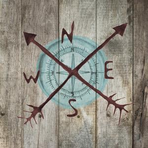 Teal Compass by Victoria Brown