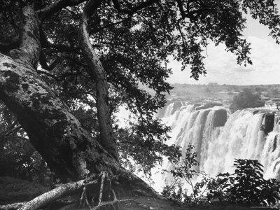 https://imgc.allpostersimages.com/img/posters/victoria-falls-on-the-zambesi-river_u-L-P3P2060.jpg?p=0