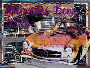Mercedes Benz 300 Sl by Victoria Hues