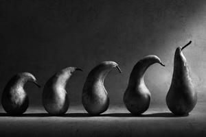 The Evolution by Victoria Ivanova
