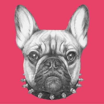 Original Drawing of French Bulldog with Collar. Isolated on Colored Background. by victoria_novak