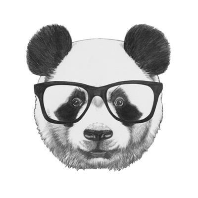 Original Drawing of Panda with Glasses. Isolated on White Background by victoria_novak