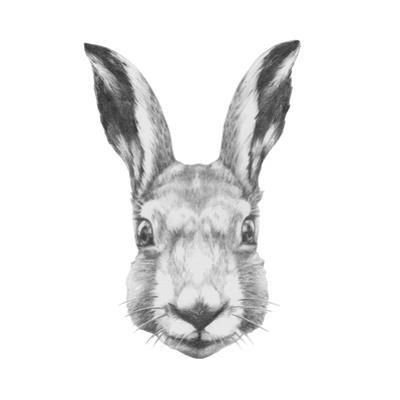 Original Drawing of Rabbit. Isolated on White Background by victoria_novak
