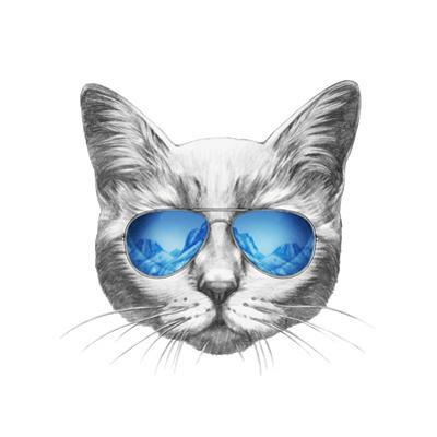 Portrait of Cat with Mirror Sunglasses. Hand Drawn Illustration. by victoria_novak