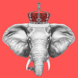 Portrait of Elephant with Crown. Hand Drawn Illustration. by victoria_novak