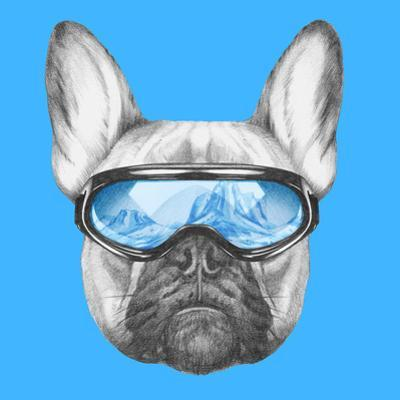 Portrait of French Bulldog with Ski Goggles. Hand Drawn Illustration. by victoria_novak