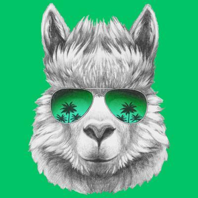 Portrait of Lama with Mirror Sunglasses and Scarf. Hand Drawn Illustration. by victoria_novak