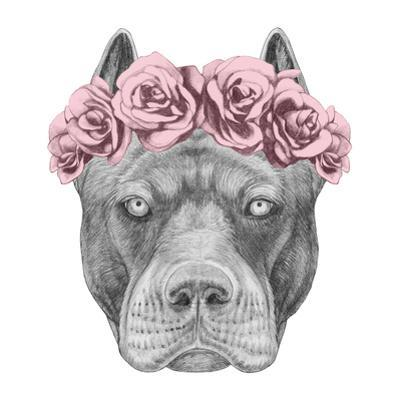 Portrait of Pit Bull with Floral Head Wreath by victoria_novak