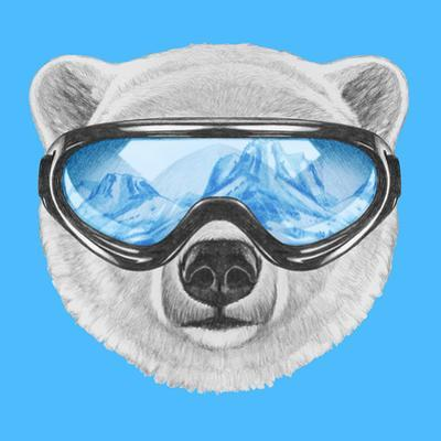 Portrait of Polar Bear with Ski Goggles. Hand Drawn Illustration. by victoria_novak