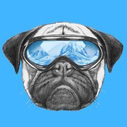 f25a93a0bd5cf Portrait of Pug Dog with Ski Goggles. Hand Drawn Illustration. by  victoria novak