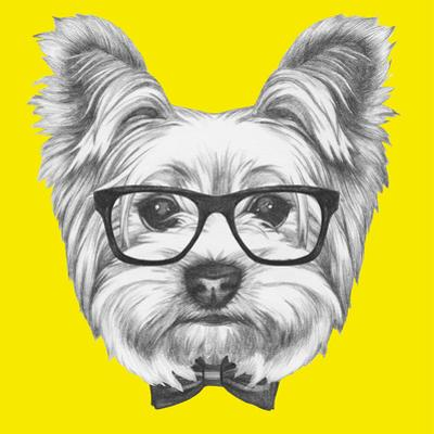 Portrait of Yorkshire Terrier Dog with Glasses and Bow Tie. Hand Drawn Illustration. by victoria_novak
