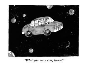"""What gear are we in, biscuit?"" - New Yorker Cartoon by Victoria Roberts"