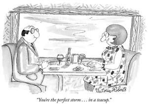 """You're the perfect storm . . . in a teacup."" - New Yorker Cartoon by Victoria Roberts"
