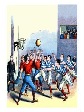 Victorian Basketball