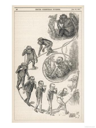 https://imgc.allpostersimages.com/img/posters/victorian-representation-of-the-ascent-of-man-from-ape_u-L-OWRRI0.jpg?p=0