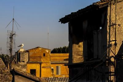 https://imgc.allpostersimages.com/img/posters/view-from-a-hotel-rome-italy_u-L-Q10VEVR0.jpg?artPerspective=n