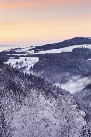https://imgc.allpostersimages.com/img/posters/view-from-black-forest-highway-to-glottertal-tal-valley-at-sunset_u-L-PWFLGK0.jpg?p=0