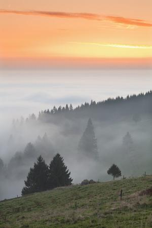 https://imgc.allpostersimages.com/img/posters/view-from-the-schauinsland-over-the-rhine-plain-at-fog-black-forest-baden-wurttemberg-germany_u-L-Q1EY4SC0.jpg?artPerspective=n