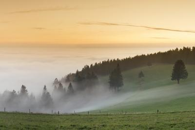 https://imgc.allpostersimages.com/img/posters/view-from-the-schauinsland-over-the-rhine-plain-at-fog-black-forest-baden-wurttemberg-germany_u-L-Q1EY6AJ0.jpg?artPerspective=n
